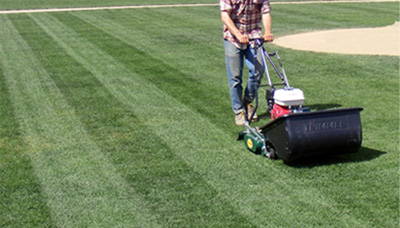 A Clean Cut Reel Mowers
