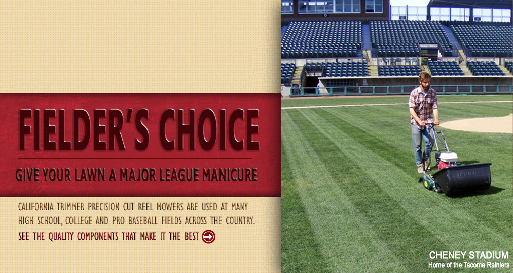 The Fielder's Choice